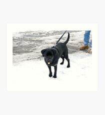 Lanie in the Snow Art Print