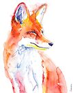 Watercolor Fox by Kendra Shedenhelm