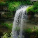 Minnehaha Falls by shutterbug2010