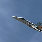 Fly Past by Paul Thompson