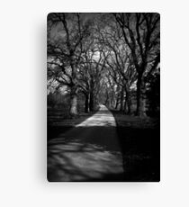 Castle Drive Canvas Print