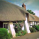 Village Cottages by naturelover