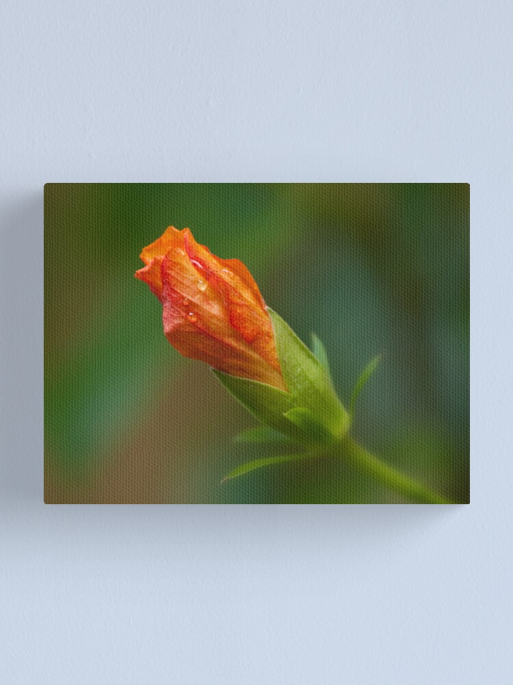 Alternate view of Another rainy day Canvas Print