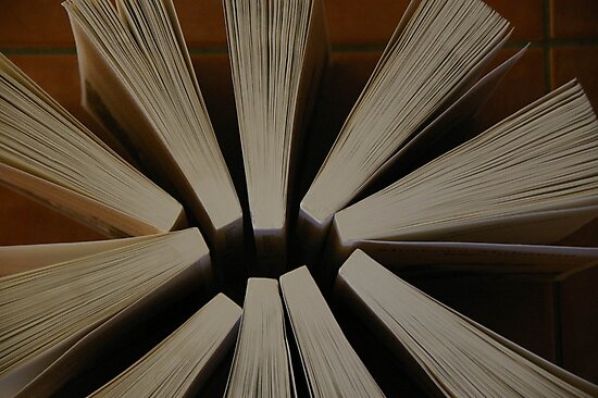 Here's A Novel Angle by David McMahon