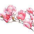 Magnolien von Louise De Masi