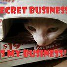Sssh.. Master Spy at Work! by Dudtrish