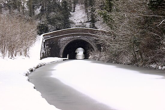 Snowing on the canal at Newbold by Avril Harris