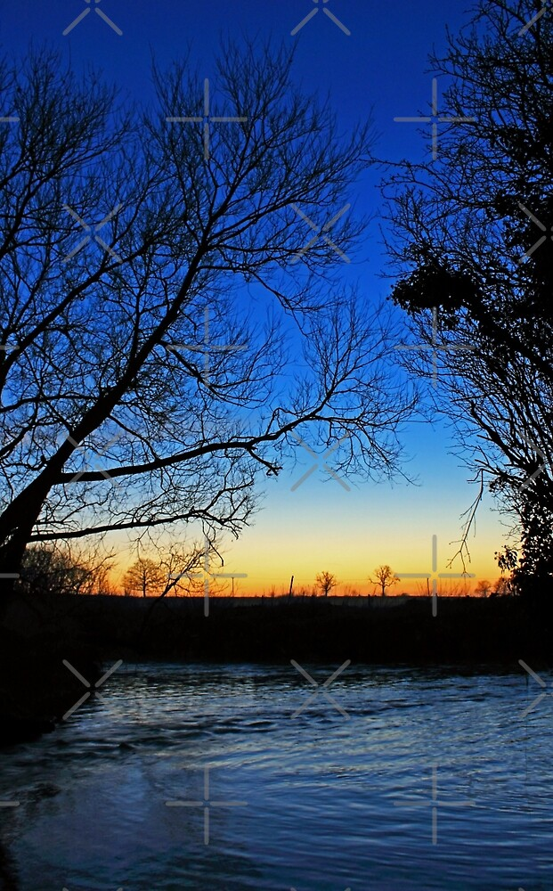 Silhouetted trees at sunset creek. by Avril Harris