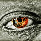 Window To The Soul by Mick Smith