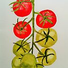 Tomatoes on the Vine by Jennifer J Watson