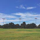 UC Davis by omhafez