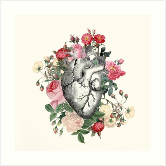 Rosen für ihr Herz von Catherine Holcombe