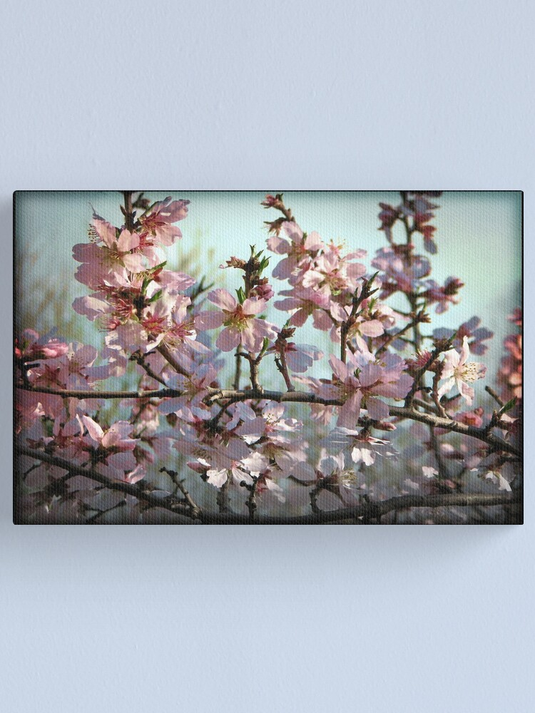 Alternate view of Spring Blossoms Canvas Print