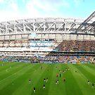 Nigeria vs. Iran, Curitiba by omhafez