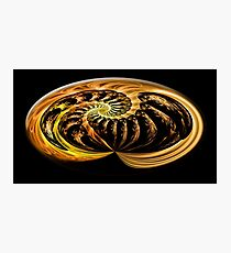 ©DA FS Spiral Plus Ultra FX2D 360. Photographic Print