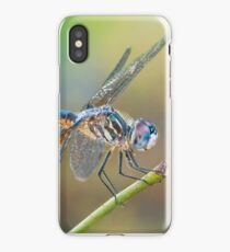 Dashing Mr. Blue Dasher iPhone Case/Skin