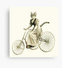 Victorian Cat Series 03 Canvas Print