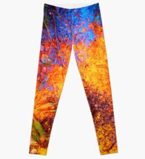 The Sunset Leggings