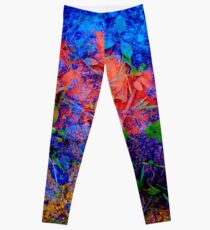 The River Leggings
