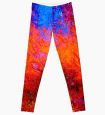 The Sunrise Leggings