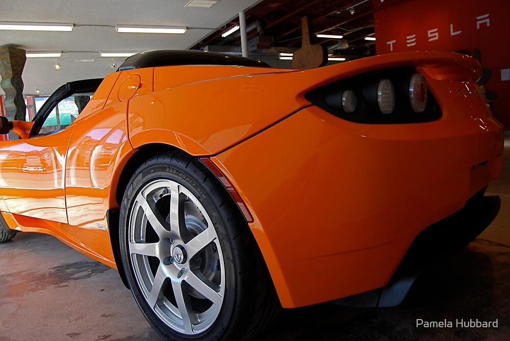 Electric Orange by Pamela Hubbard