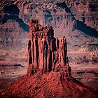 Candlestick Tower - Canyonlands National Park by Len Bomba