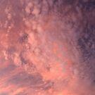 summer twilight - Gippsland by Tony Middleton