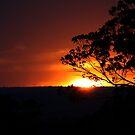 Hill's Sunset von Evita