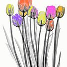 Colourful Tulips by Paul CESSFORD