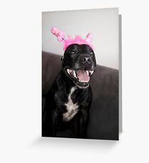 Hmmmmm X Rated Staffy???? Greeting Card