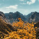 Autumn in the mountains by Pascal Deckarm