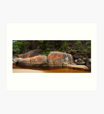 Tidal River, Wilsons Promontory National Park Art Print