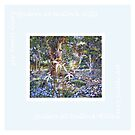 Scarf - Australian wildflowers and bush by scallyart