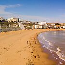 Viking Bay Panorama by Geoff Carpenter