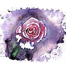 Rainbow Rose by RavensLanding