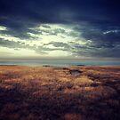 «Tierra» de baxiaart