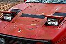 Yard Find: Ferrari 1984 GTO Berlinetta Nose by John Schneider