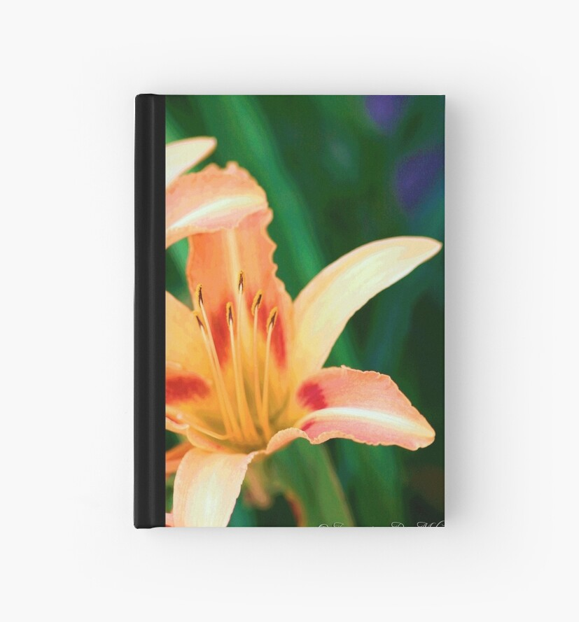 Abstract Lily by Melanie Wells