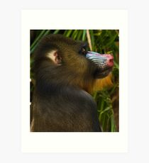 This is my best side! Art Print