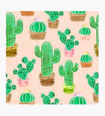 Potted Cactus & Pink Drawing Photographic Print