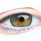 Step by Step Tutorial on drawing an Eye by Karen  Hull