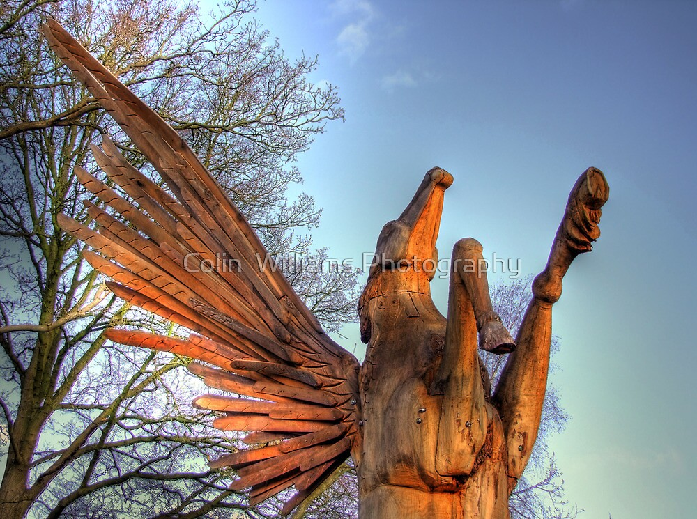 Pegasus Tree Sculpture Woking 2 - HDR  by Colin  Williams Photography