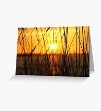 A Taste of Tranquility Greeting Card