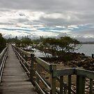Urunga Boardwalk by Lawrie McConnell