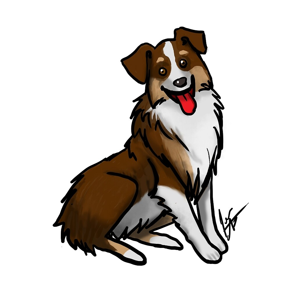 Australian Shepherd - Tri Color by Jennifer Stolzer
