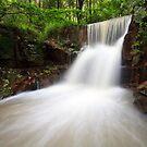 Waterfall on Morrison's Property by David de Groot
