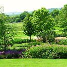 Englische Landschaft - Hyde Hall, Essex von BlueMoonRose