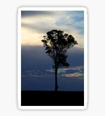 Baum kurz vor dem Sonnenuntergang Sticker