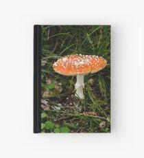 Toadstool Hardcover Journal
