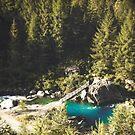 Mallero Mountain River - Lombardia - Italy by Dirk Wuestenhagen